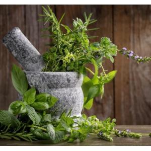 Насіння пряних та лікувальних трав