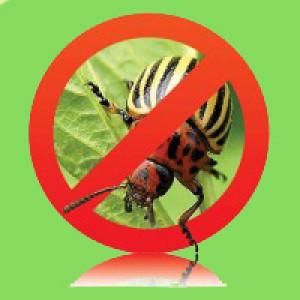 Засоби захисту від шкідників (інсектициди) Агромаксі