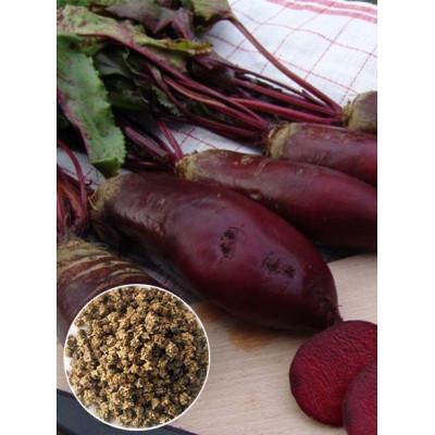 Буряк столовий Ренова (насіння) 1 кг - оптом