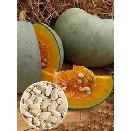 Гарбуз Волжський сірий ваговий (насіння) 1 кг