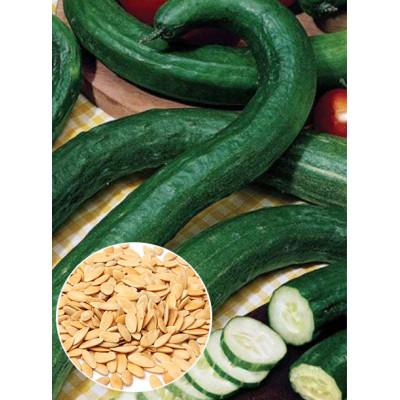 Огірок Китайський Змій ваговий (насіння) 1 кг - оптом