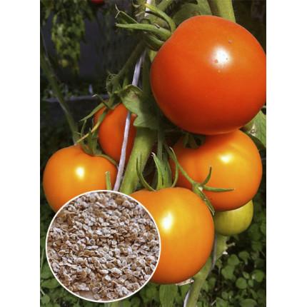 Томат Рыжик весовой (семена) 1 кг