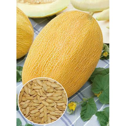 Дыня Алушта весовая (семена) 1 кг