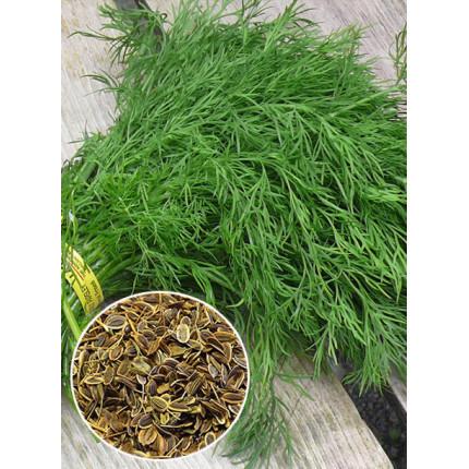 Кріп Тетра ваговий (насіння) 1 кг