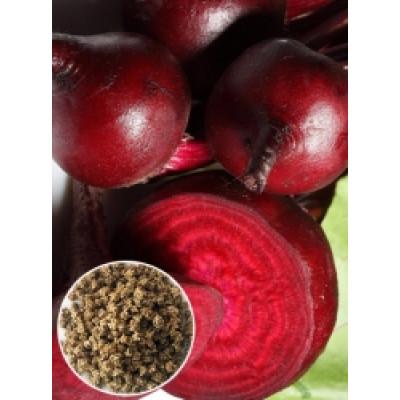 Буряк столовий Червона куля (насіння) 1 кг - оптом