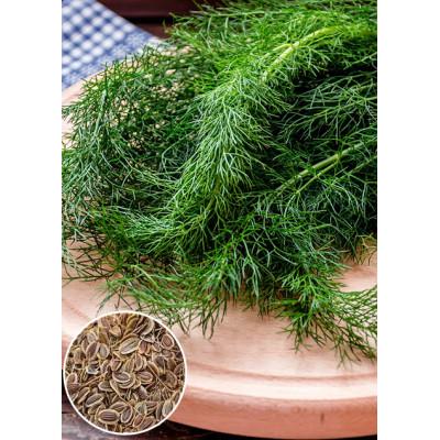 Кріп Алігатор ваговий (насіння) 1 кг - оптом