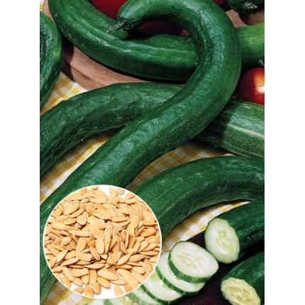 Огурец Китайский змей весовой (семена) 1 кг