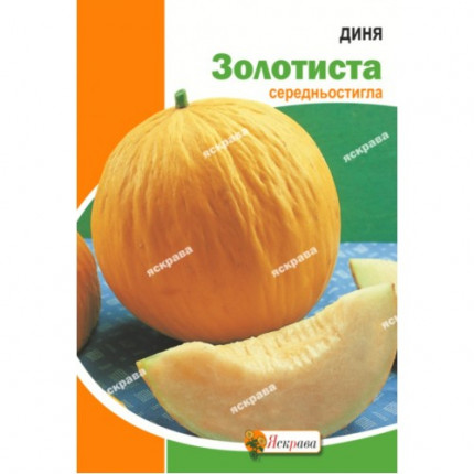 Дыня Золотистая 10 г