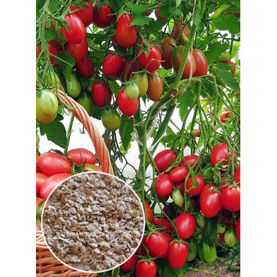 весовое количество семян