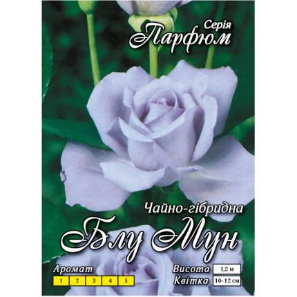 Троянда ч/г Блу Мун (контейнер)