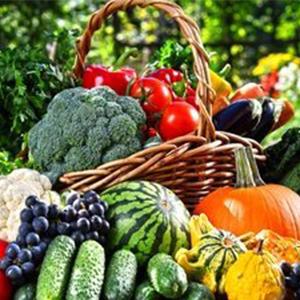 Насіння овочів (європакет)