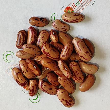 Квасоля Борлотто вагова (насіння) 1 кг