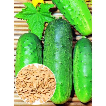 Огурец Универсальный весовой (семена) 1 кг