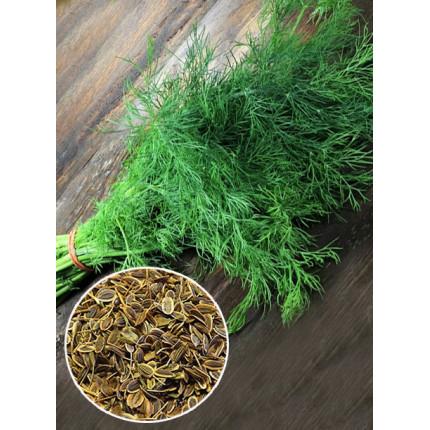 Кріп Спрінтер ваговий (насіння) 1 кг