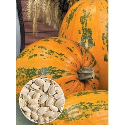Тыква Украинская Многоплодная весовая (семена) 1 кг