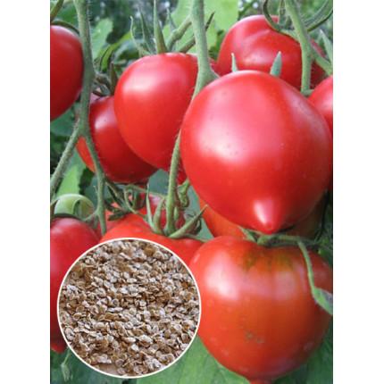 Томат Надежда Тарасенко весовой (семена) 1 кг