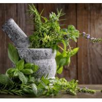 Семена пряных  и лекарственных трав