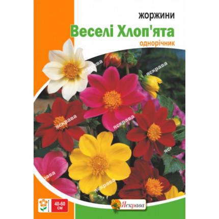 Георгины Весёлые Ребята смесь 2 г