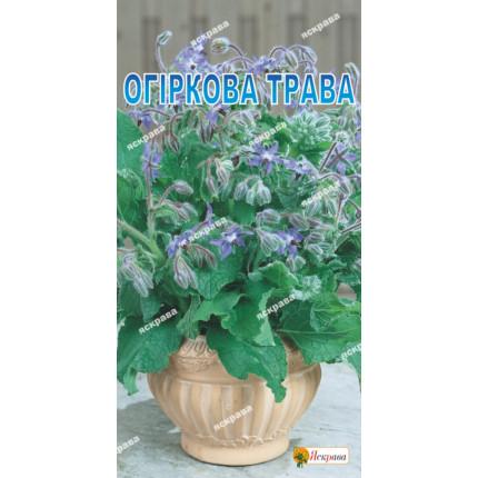 Огуречная трава (бораго) 1 г