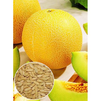 Дыня Ранняя 133 весовая (семена) 1 кг