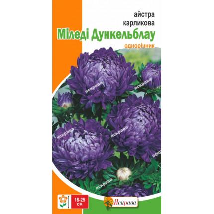 Астра карликовая Миледи Дункельблау 0.3 г
