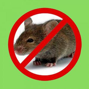 Засоби від мишей, щурів, кротів і сліпаків