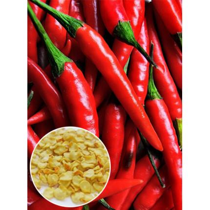 Перец Папперони красный весовой (семена) 1 кг
