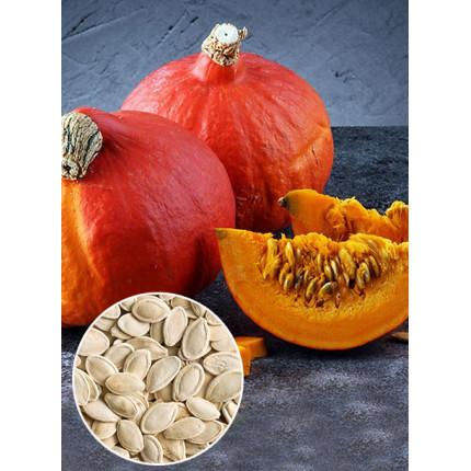 Гарбуз Хоккайдо ваговий (насіння) 1 кг