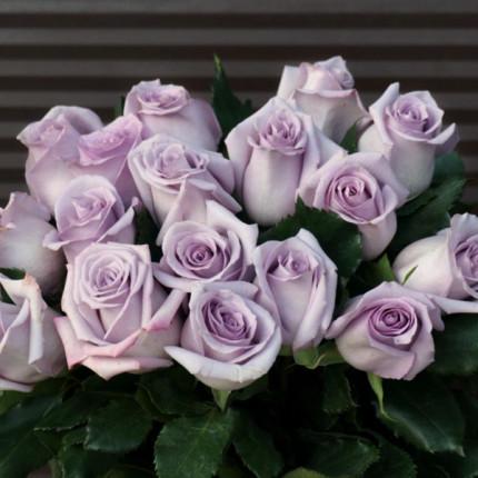 Роза штамбовая Оушен Сонг 1 прививка