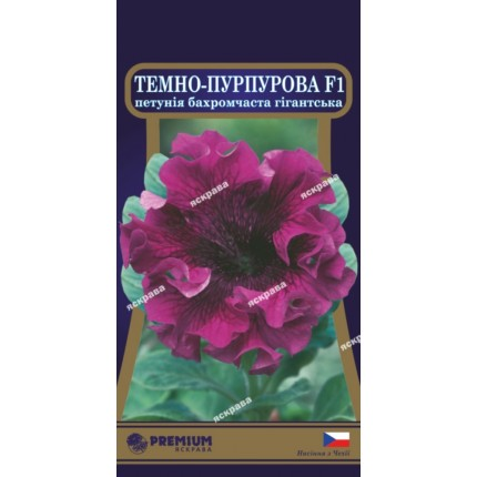 Петунія бахромчаста Темно-пурпурова F1 10 нас в оболонці