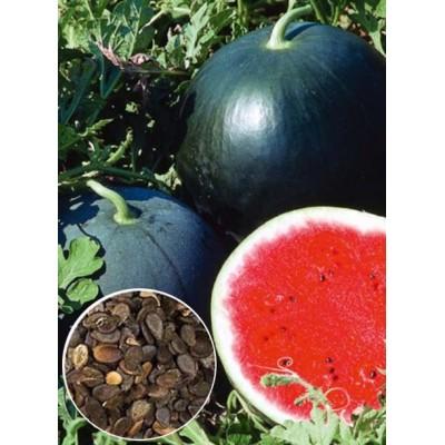 Кавун Огоньок ваговий (насіння) 1 кг - оптом