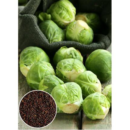 Капуста брюссельская Long Island весовая (семена) 1 кг